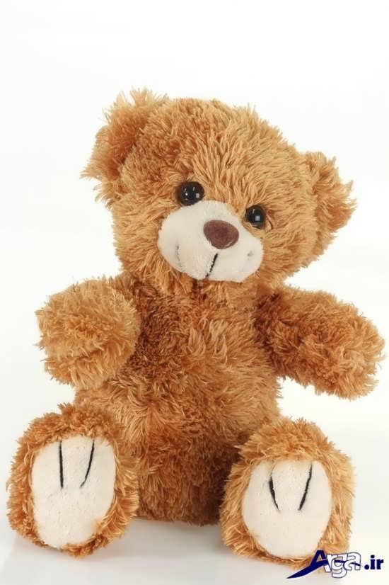 عکس خرس عروسکی قهوه ای