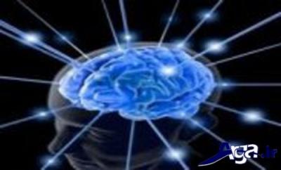 چگونگی عملکرد مواد مغذی موجود در فلفل سبز روی اعصاب