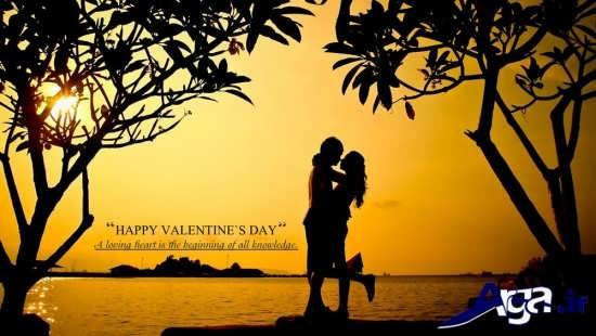 عکس های آغوش رمانتیک