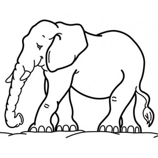 نقاشی فیل کودکانه