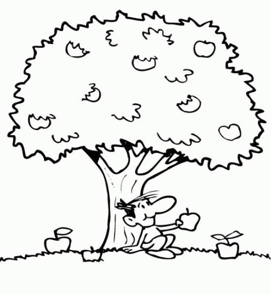 مدل نقاشی درخت