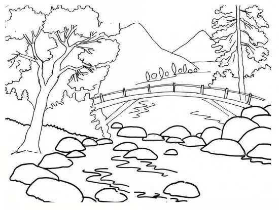 نقاشی جنگل کودکانه
