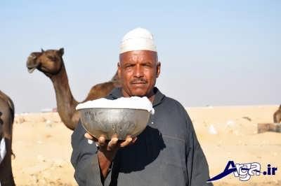 خواص دارویی شیر شتر