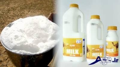 خاصیت شیر شتر در درمان اوتیسم