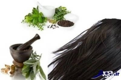 روش تهیه رنگ موهای گیاهی در منزل