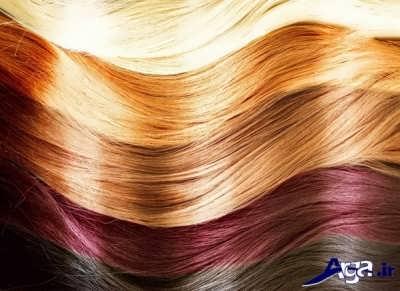 انواع رنگ موهای طبیعی با طرز تهیه ای آسان