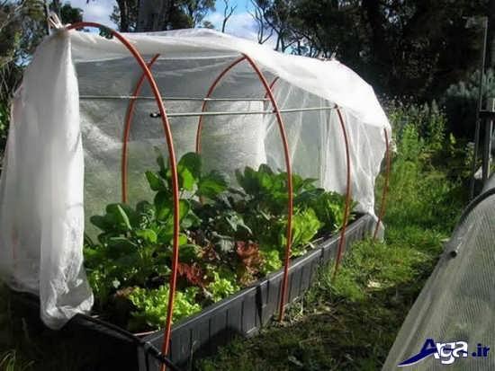 گلخانه با پوشش پلاستیک