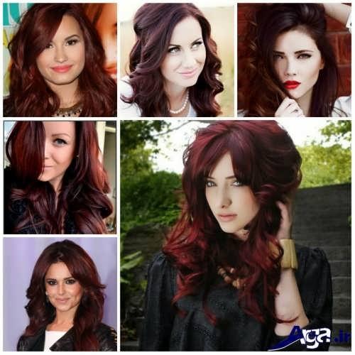 Mahogany hair color (14)