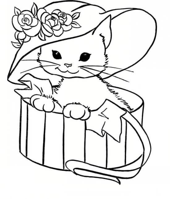 نقاشی زیبا و دوست داشتنی گربه ملوس