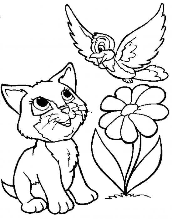نقاشی گربه در مناظر طبیعی