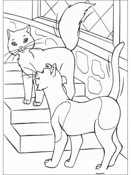 گربه های اشرافی برای رنگ آمیزی