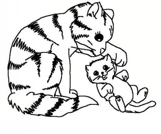 نقاشی های زیبا و جذاب از گربه