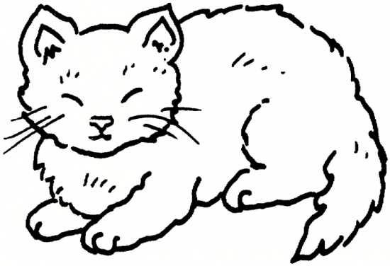 نقاشی جالب از گربه خوابالو برای رنگ آمیزی کودکان