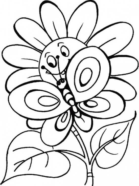 نقاشی گل آفتابگردان و پروانه