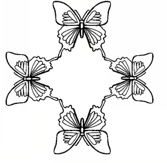 رنگ آمیزی پروانه برای کودکان