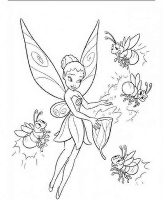 نقاشی انواع پروانه های زیبا