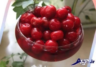 خواص میوه آلبالو