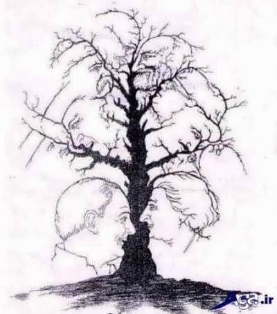 تشخیص چهره انسان ها در شاخه های درخت
