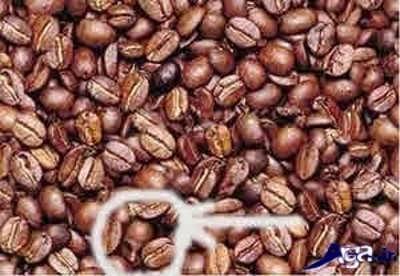 شناسایی چهره انسان در درون قهوه