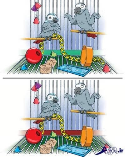 پیدا کردن 6 تفاوت در تصویر