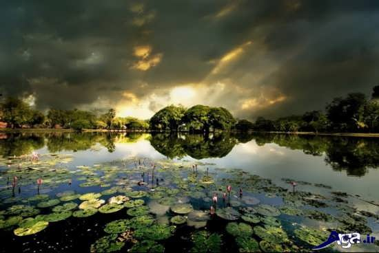 شگفت انگیز ترین عکس های طبیعت