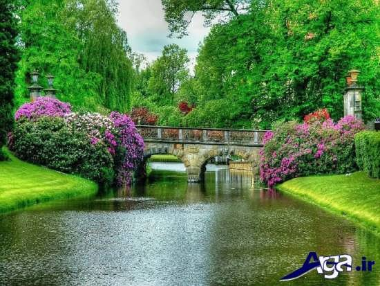 تصاویر زیبا از پل و طبیعت