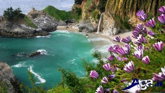 تصاویر زیبا از رودخانه و طبیعت