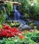 تصاویر زیبا از طبیعت رویایی سراسر دنیا