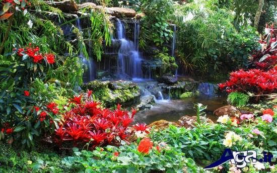تصویر زیبا از آبشار و گل