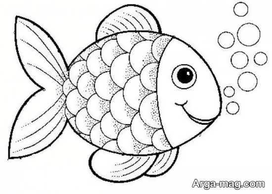مدلی از الگوی حیوانات نمدی