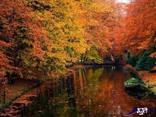 طبیعت پاییزی جالب و دیدنی