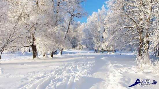عکس های جالب زمستان