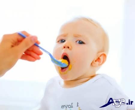 انواع غذاها برای کودک شش ماهه