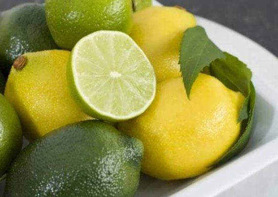 خاصیت ها مهم لیمو ترش