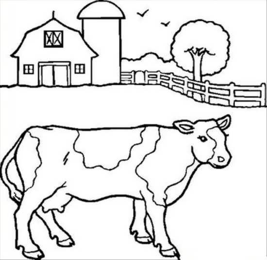 نقاشی گاو زیبا در مزرعه