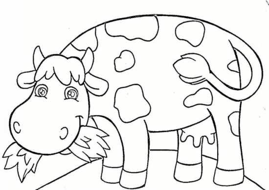 نقاشی گاوهای شکمو