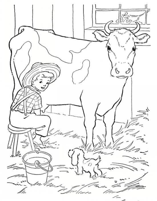 نقاشی گاو شیرده زیبا