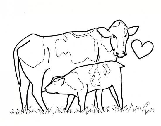 نقاشی مادر گاو
