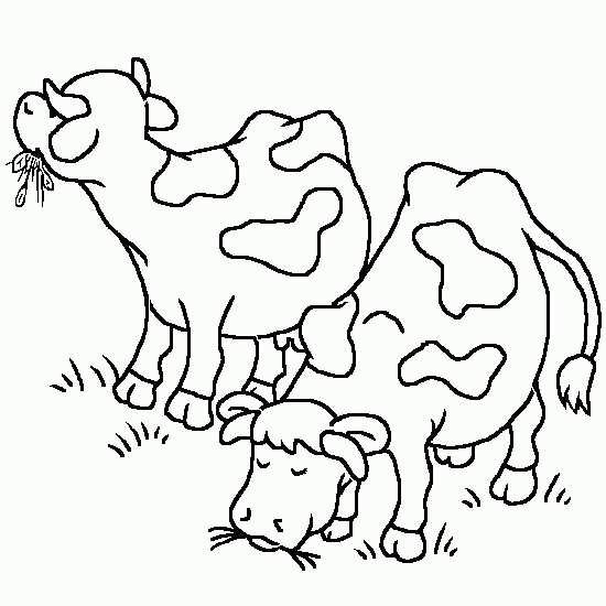 نقاشی گاو جذاب