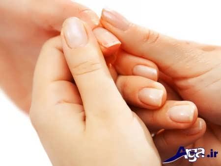خاصیت های درمانی روغن بادام شیرین