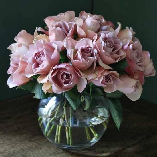 عکس گلدان گل برای پروفایل