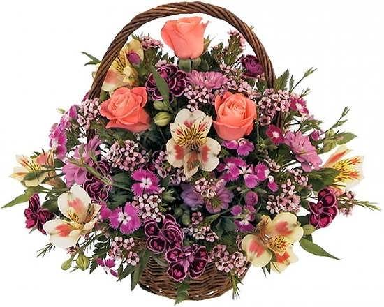 عکس زیبای گل برای پروفایل