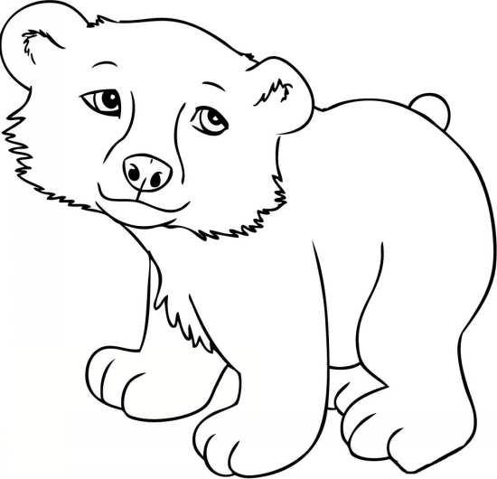 نقاشی خرس کودکانه