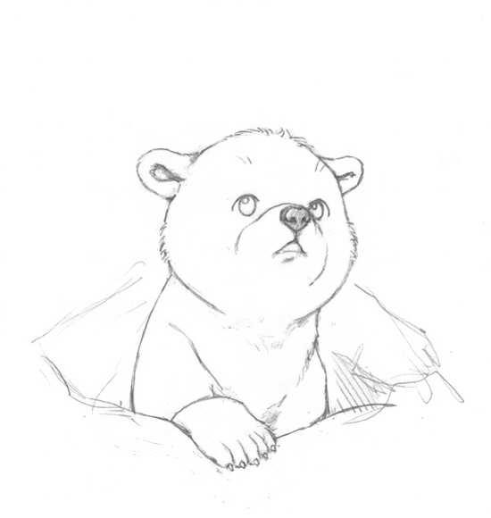 نقاشی های خرس در حال خواب