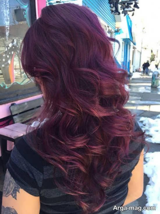 رنگ مو فانتزی بادمجونی