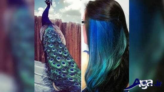 رنگ موی فانتزی طاووسی