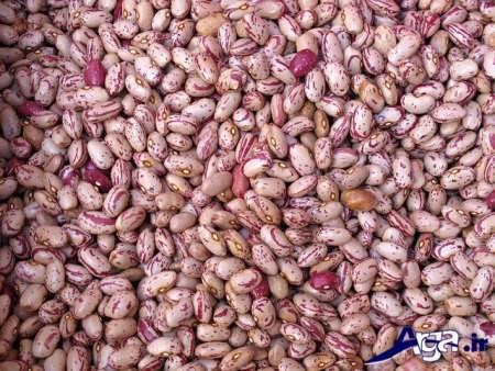 خاصیت های درمانی لوبیا چیتی