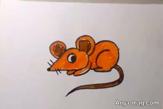 رنگ آمیزی موش جذاب