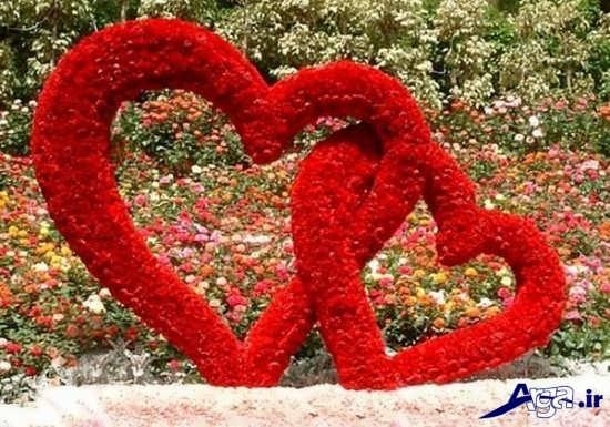 عکس حلقه گل به شکل قلب زیبا