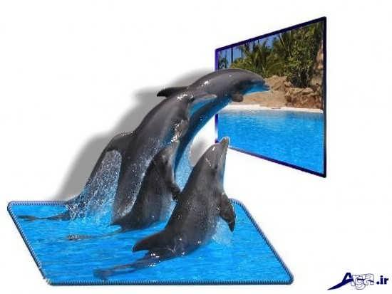 عکس های سه بعدی جالب